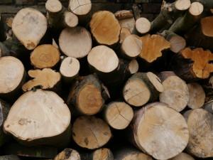 Firewood Sheffield